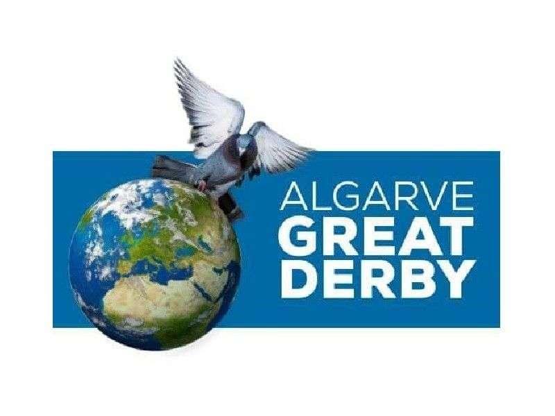 ALGARVE GREAT DERBY 2016. 5º TRAINING - ONE LOFT RACING