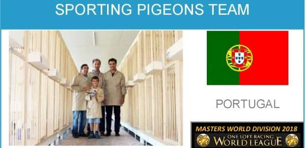 Sporting Pigeons Team (Portugal). KNOCK OUT Championship 2018 CHAMPION.